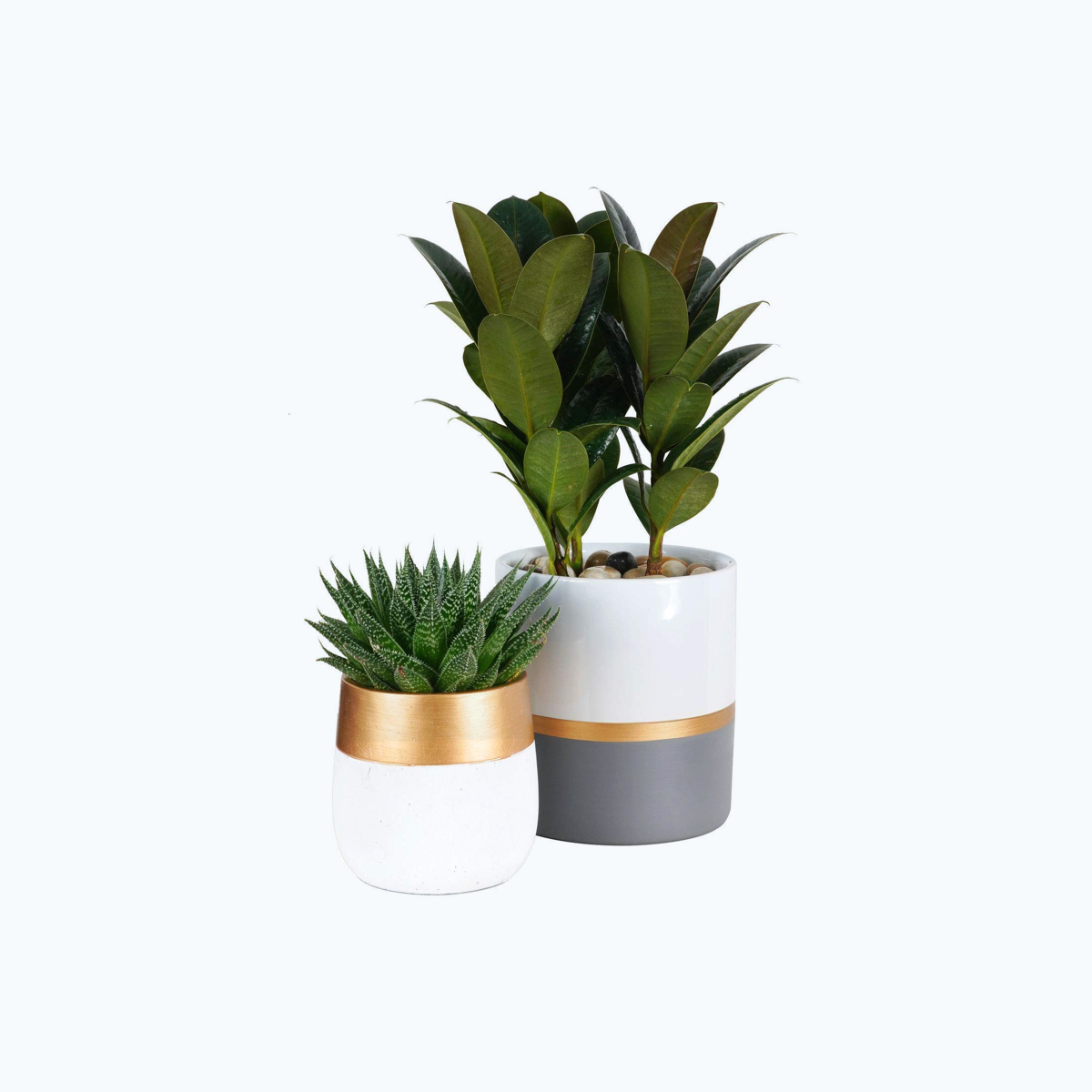 Indoor Planters, Set of 2