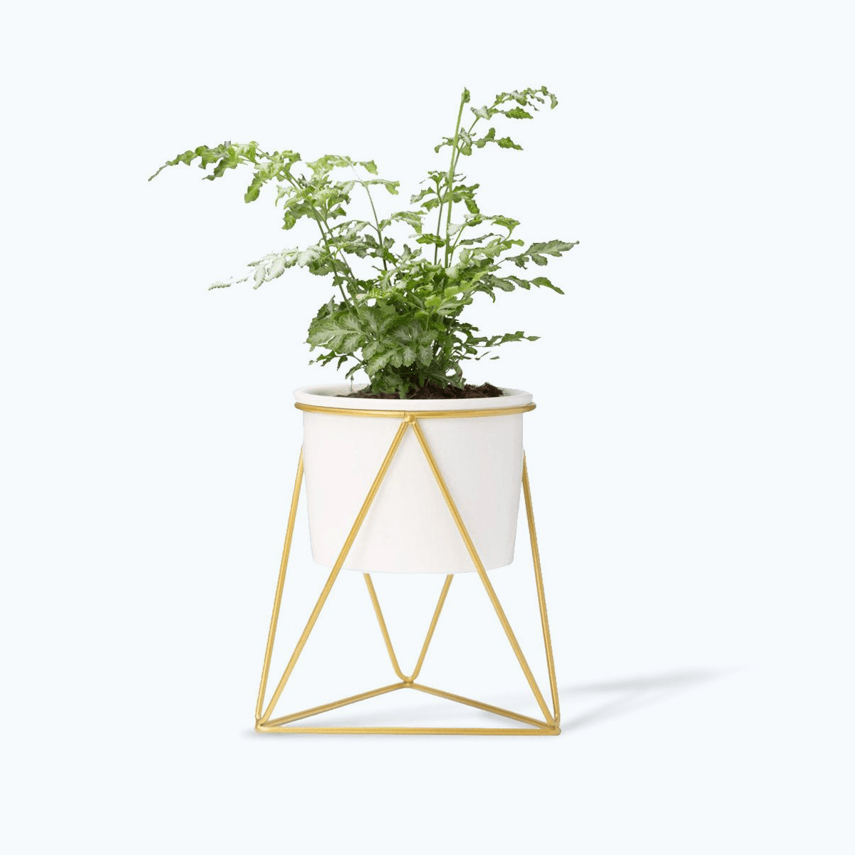 Tabletop Ceramic Planter with Metal Stand