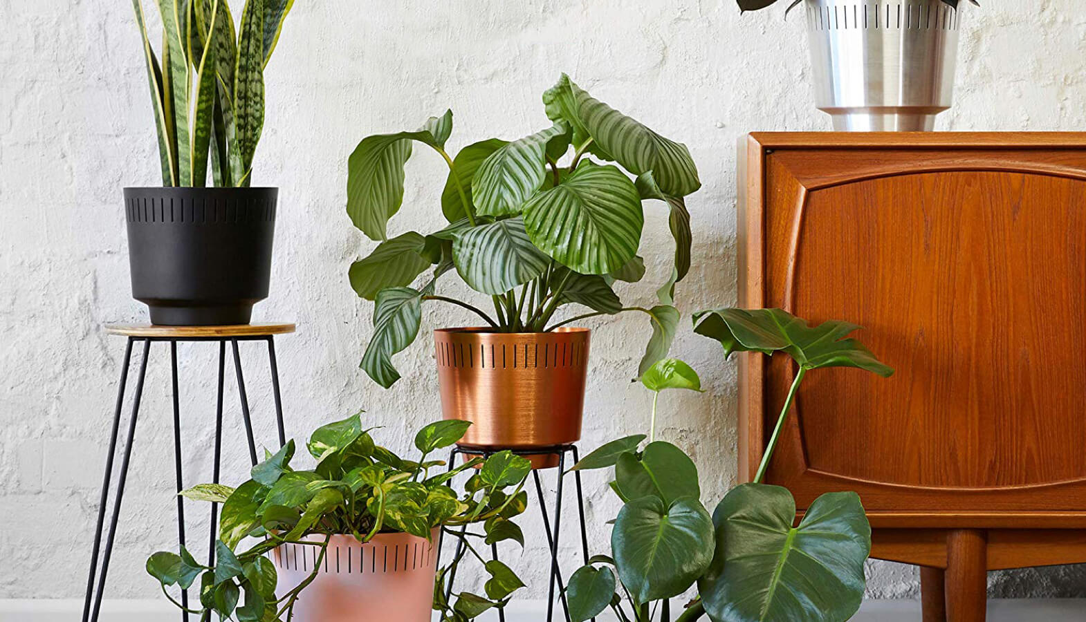 Indoor Planters Our Favorites For The Modern Home Mid