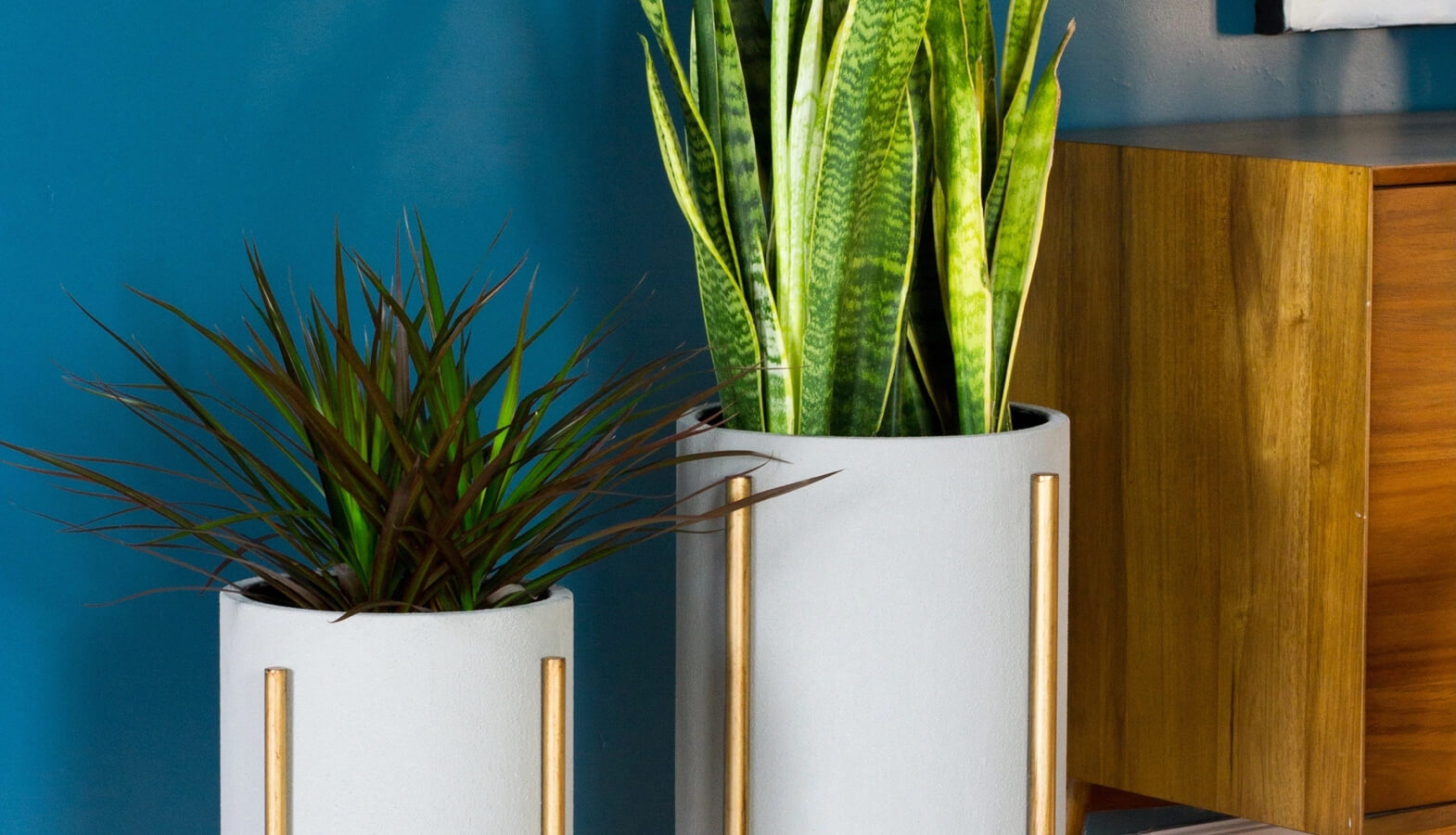 Mid-century planters: Our favorites for the modern home